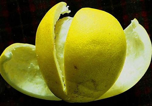 柚子皮可以除甲醛吗